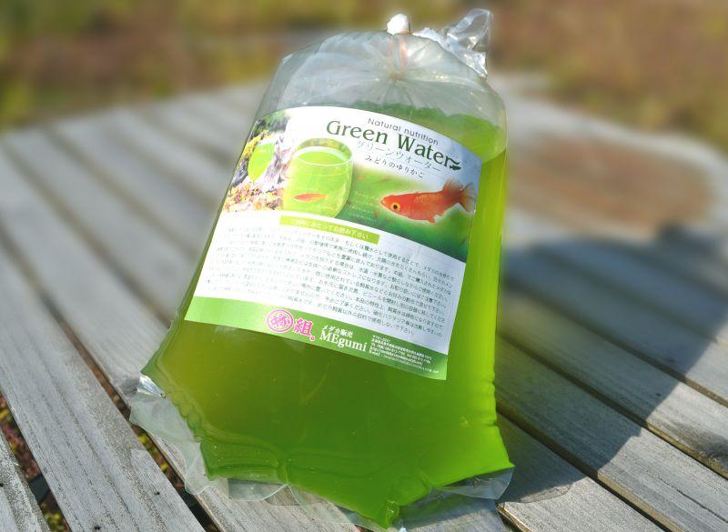 ウォーター メダカ グリーン グリーンウォーターの作り方!メダカの稚魚に最適な水を簡単に早く失敗なしで作る方法!